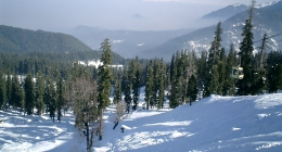 Gulmarg, Resort Hotels