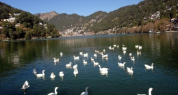 Nainital, Resort Hotels