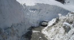Shimla, Leh