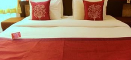OYO Rooms 100ft Road Udaipur