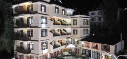 , Manali, Hotels
