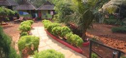 , Anjuna, Budget Hostals