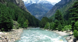 Jogiyana, Srinagar