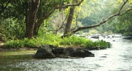 Vellamunda, Neeleshwar